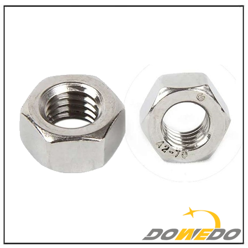 Stainless Steel Hexagon Head Nuts
