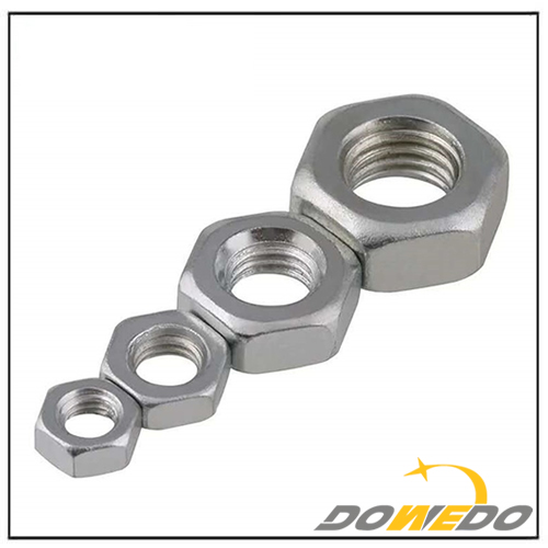 Stainless Steel SS304 SS316 Hex Nut