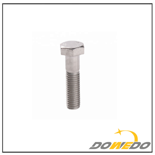 Stainless Steel Polished Bolt